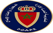 Logo DGAPR copie